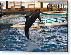 Dolphin Show - National Aquarium In Baltimore Md - 1212211 Acrylic Print