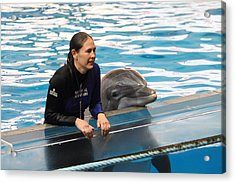 Dolphin Show - National Aquarium In Baltimore Md - 1212230 Acrylic Print by DC Photographer