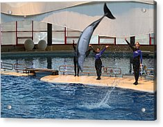 Dolphin Show - National Aquarium In Baltimore Md - 1212273 Acrylic Print