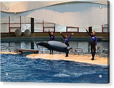 Dolphin Show - National Aquarium In Baltimore Md - 1212276 Acrylic Print
