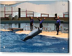 Dolphin Show - National Aquarium In Baltimore Md - 1212277 Acrylic Print