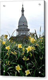Dome Through The Daffodils Acrylic Print
