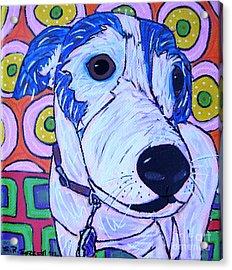 Domino Dog Acrylic Print by Susan Sorrell
