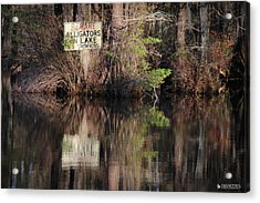 Don't Feed The Alligators Acrylic Print