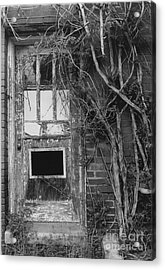 Door With Vines Acrylic Print by Michelle OConnor