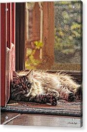 Doorstop Acrylic Print by Karen Slagle