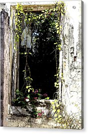 Doorway Delights Acrylic Print by Anne Mott