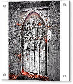 Doorway In Cork Acrylic Print by Maeve O Connell