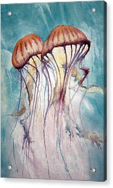 Dos Jellyfish Acrylic Print by Jeff Lucas