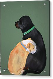 Doser And Cody Acrylic Print by Michele Turney