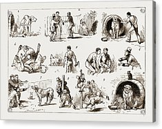 Dosing A Dog, 1883 1. Our St. Bernard Showed Symptoms Acrylic Print by Litz Collection