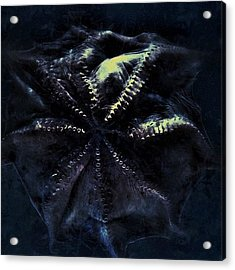 Dot  #aquarium #bw #blue #beautiful Acrylic Print