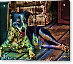 Acrylic Print featuring the digital art Dottie Blued by Robert Rhoads