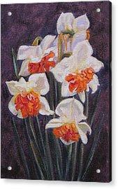 Double Daffodil Replete Acrylic Print