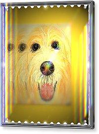 Double Dog Acrylic Print by Desline Vitto