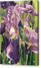 Double Purple Irises -painting Acrylic Print