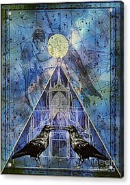 Double Raven Constellation Acrylic Print by Judy Wood