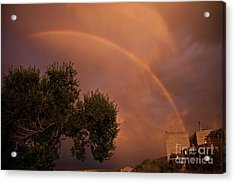 Double Red Rainbow With Tree In Jerome Acrylic Print