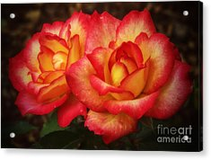 Double The Delight Acrylic Print