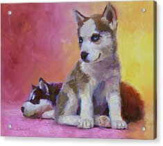 Double Trouble - Alaskan Husky Sled Dog Puppies Acrylic Print