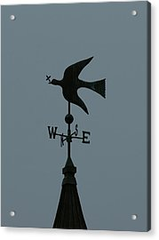 Dove Weathervane Acrylic Print by Ernie Echols