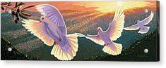 Doves And Olive Branch Acrylic Print by Steve Simon