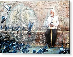 Acrylic Print featuring the photograph Doves Of Istanbul by Lesley Fletcher