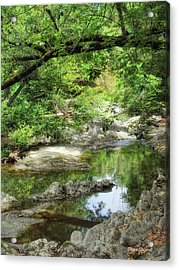 Down By The Creek Acrylic Print by Donna Blackhall