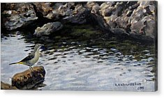 Down By The Water Acrylic Print