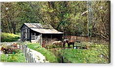 Down In The Valley Long Acrylic Print by Marty Koch