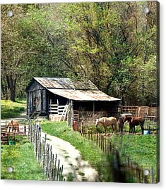 Down In The Valley Square Acrylic Print by Marty Koch