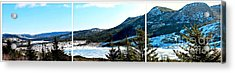 Down In The Valley Triptych Acrylic Print by Barbara Griffin