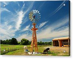 Down On The Farm Acrylic Print by Elaine Franklin