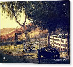 Acrylic Print featuring the photograph Down On The Farm by Rhonda Strickland