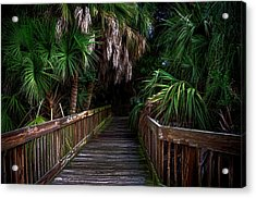 Acrylic Print featuring the photograph Down The Boardwalk by Pamela Blizzard