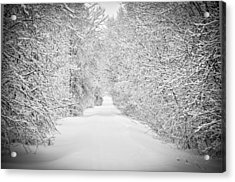 Down The Lane Acrylic Print by BandC  Photography