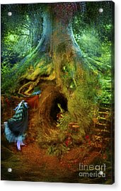 Down The Rabbit Hole Acrylic Print by Aimee Stewart