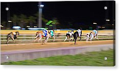 Down The Track Acrylic Print by Keith Armstrong