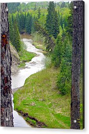 Downriver Acrylic Print by Jim Sauchyn