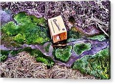 Downstream Acrylic Print by Marshall Turley