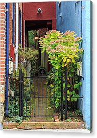 Downtown Garden Path Acrylic Print