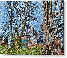 Downtown Raleigh - View From Chavis Park Acrylic Print by Micah Mullen