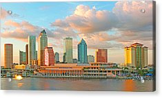 Downtown Tampa Skyline Acrylic Print
