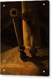 Acrylic Print featuring the photograph Dr. S Horn by Kandy Hurley