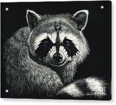Draccoon Acrylic Print