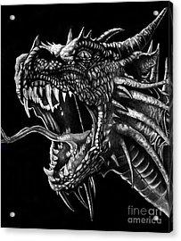 Dragon Acrylic Print by Bill Richards