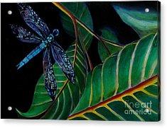 Dragon Fly Soaring - Botanical Acrylic Print by Grace Liberator
