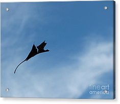Acrylic Print featuring the photograph Dragon In Flight by Jane Ford