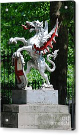Dragon With St George Shield Acrylic Print