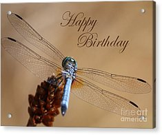 Dragonfly Birthday Card Acrylic Print by Carol Groenen